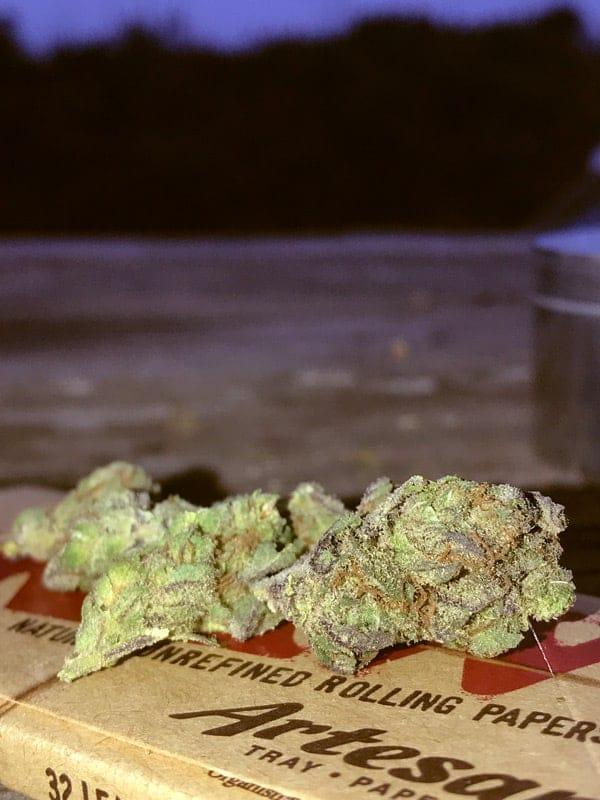 Raspberry Cookies Buds