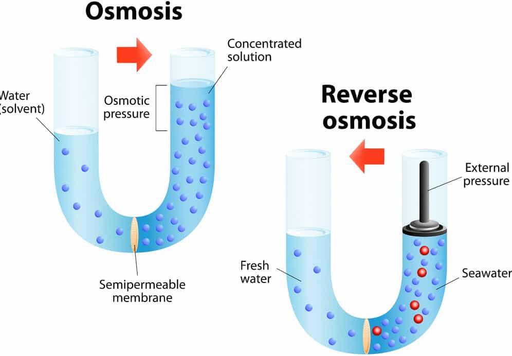 Veranschaulichung des Prinzips von Osmose und umgekehrter Osmose